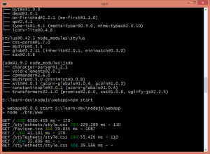 express_console_output